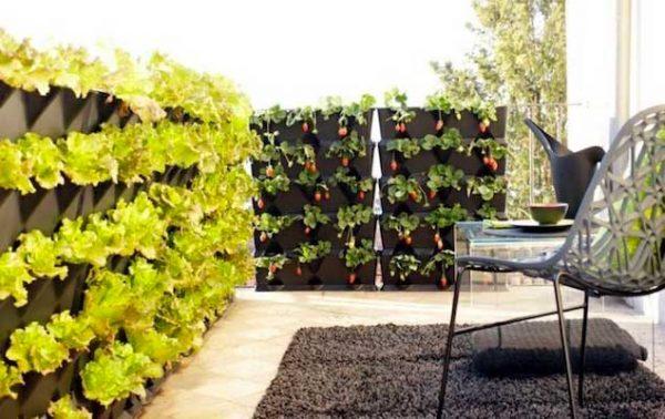 10 solutions gain de place pour jardiner sur le balcon