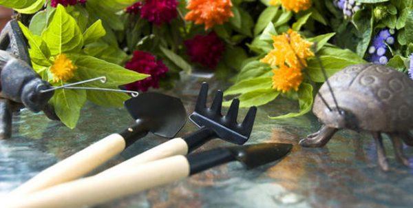 Evitez les 5 erreurs du jardinier débutant
