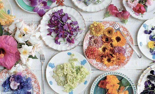 Fleurs comestibles, belles au jardin et sur la table !