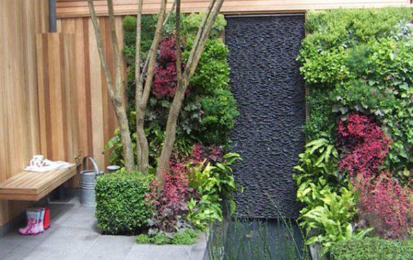 Meilleures grimpantes pour balcon et petit jardin