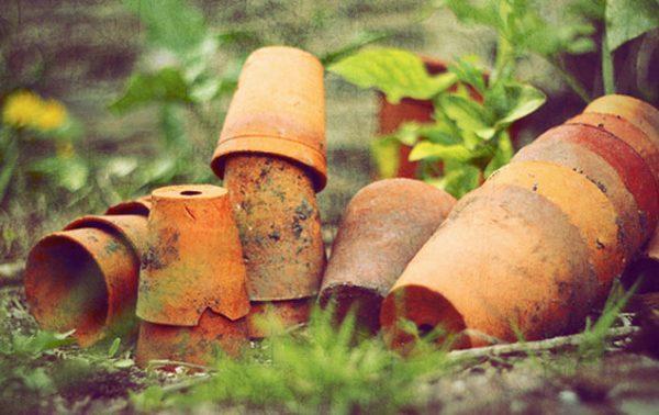 Astuces rangement dans un petit jardin