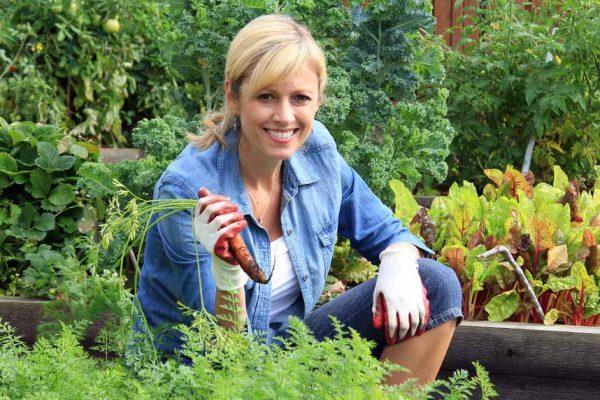 Jardinier débutant : 10 conseils pour votre potager