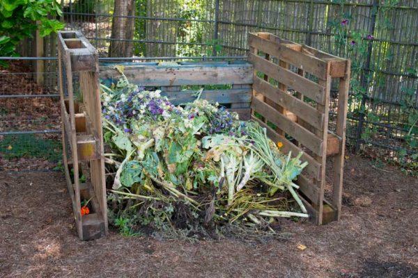 En tas, en surface ou lombricompost : quel compost choisir ?