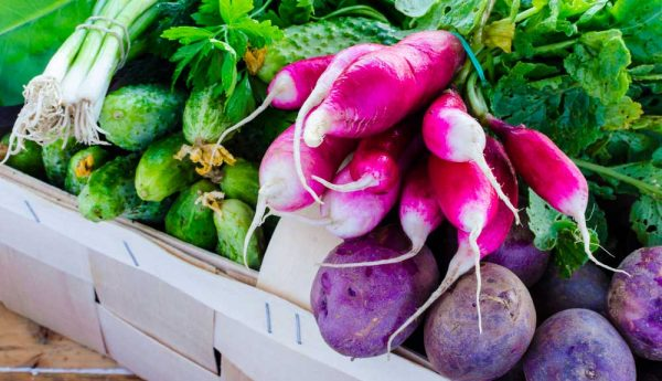 Fruits et légumes frais : l'appauvrissement en vitamines et minéraux des végétaux