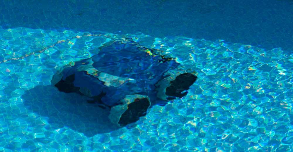 robot piscine hors sol